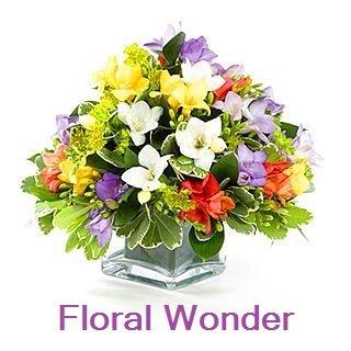 Floral Wonder Aroma